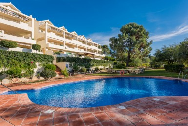 pool of the Apartments in Selwo Estepona